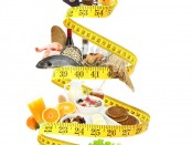 nutricion-intestinal